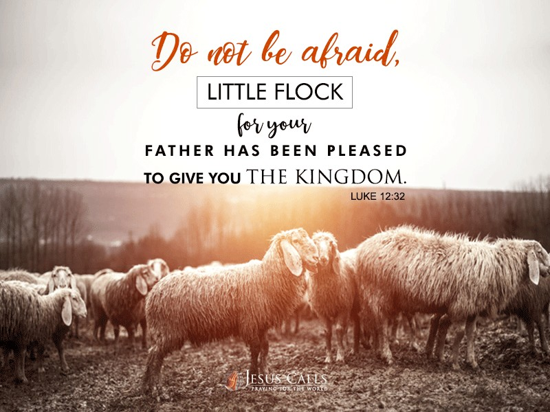 Do not be afraid, little flock, for your Father has been pleased to give you the kingdom.