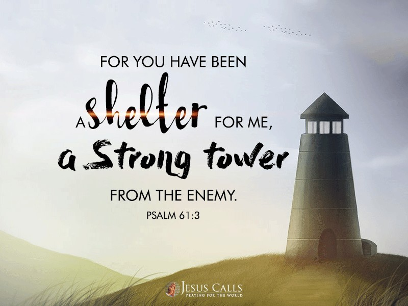 For You have been a shelter for me, A strong tower from the enemy.