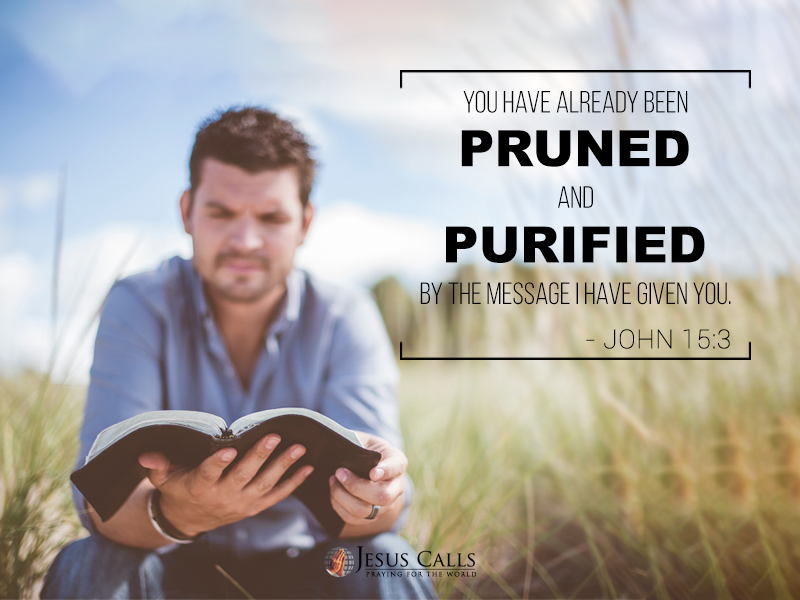You have already been pruned and purified by the message I have given you.